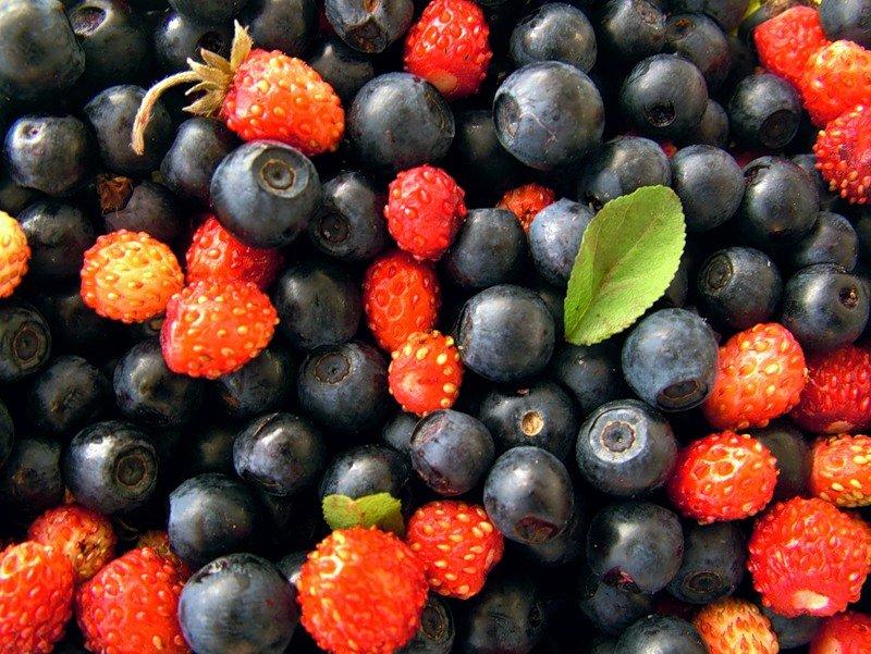 поставлялась картинки ягод на юге лучше посчитали сколько