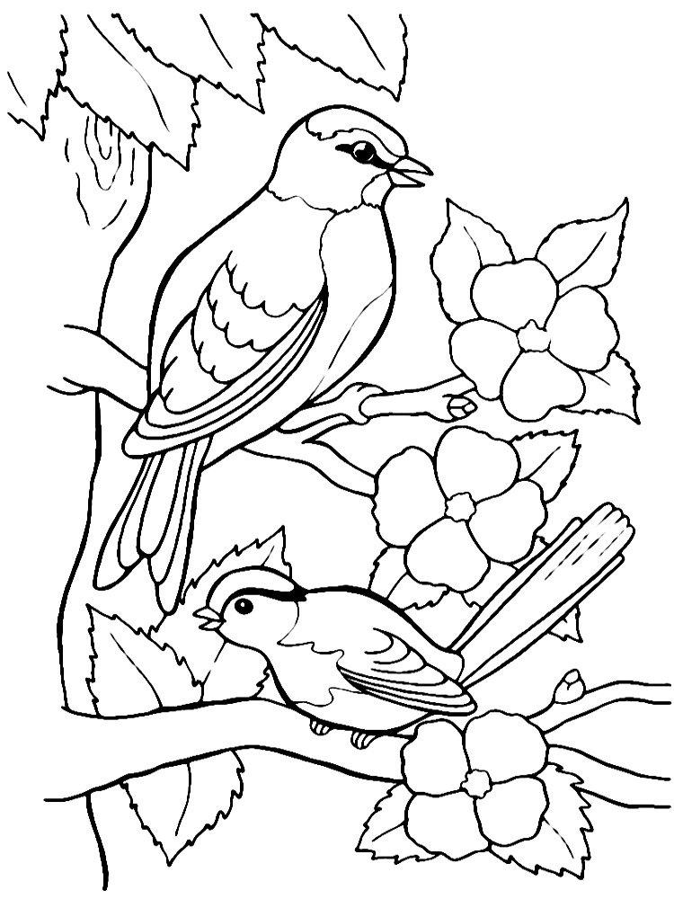 Надписью прощенное, картинка с синичками печатать
