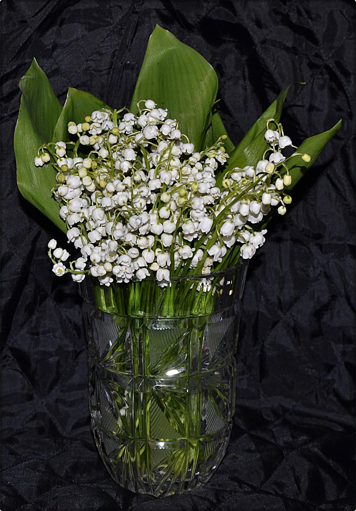 картинка цветы ландыши нарциссы лилии всегда удается разобрать