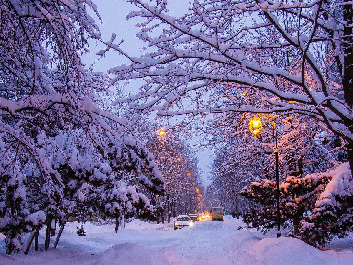 Открытки для, зимнего вечера картинки