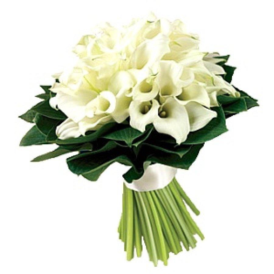 Букеты с белыми каллами, для невесты больших