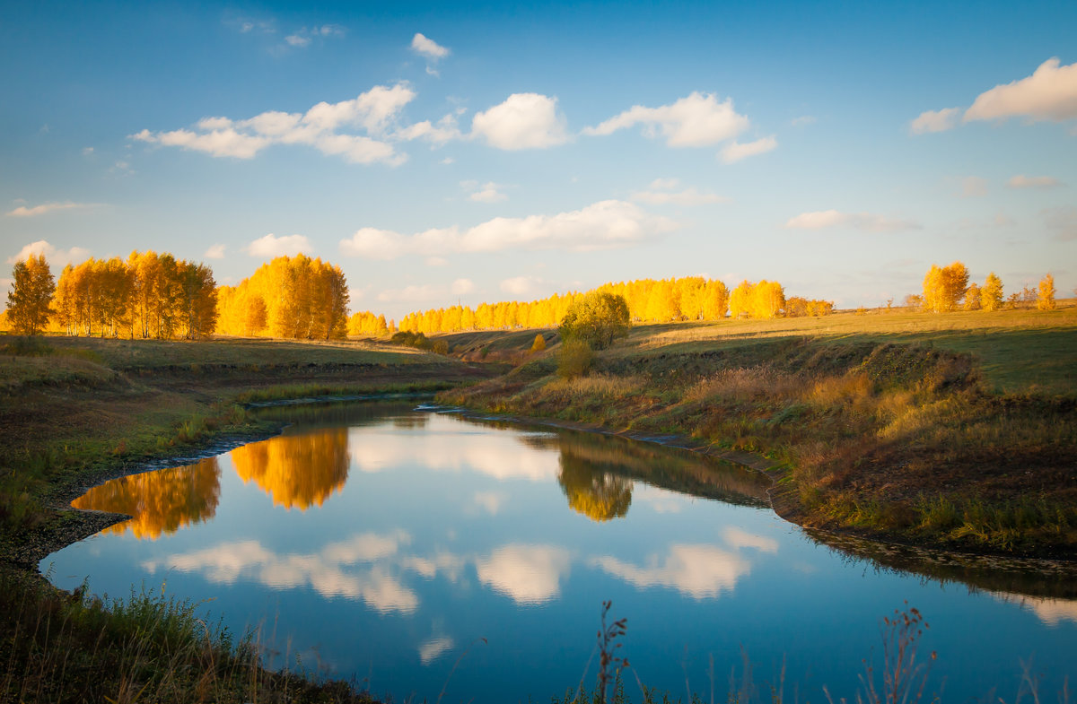 картинки природа средней полосы россии красивые шумного