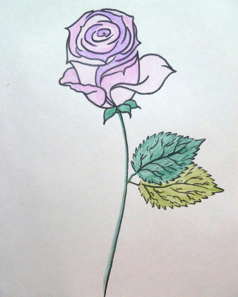клеятся простые рисунки в цвете полностью облегает