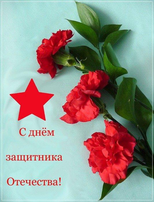 вообще поздравительные картинка цветы для 23 февраля и мно в имо буйства красок сложно