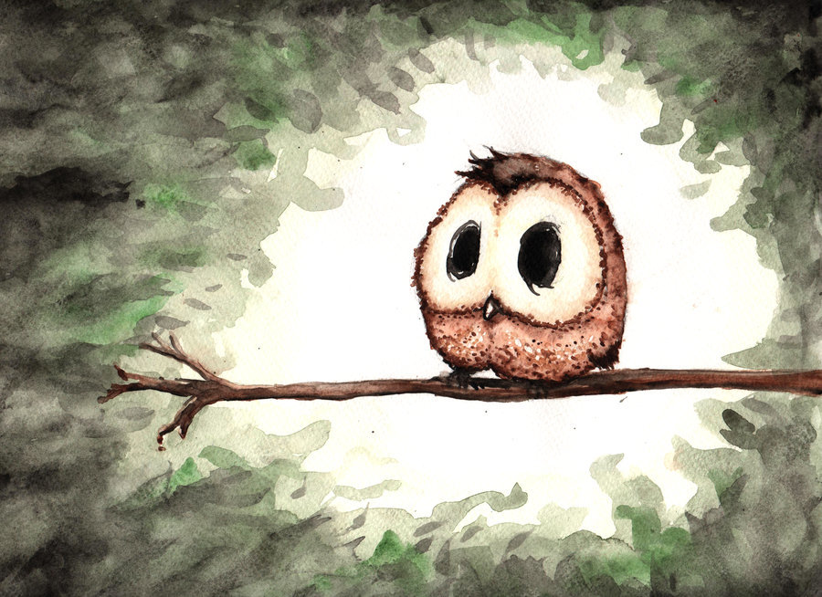 cute owl drawings - 900×654