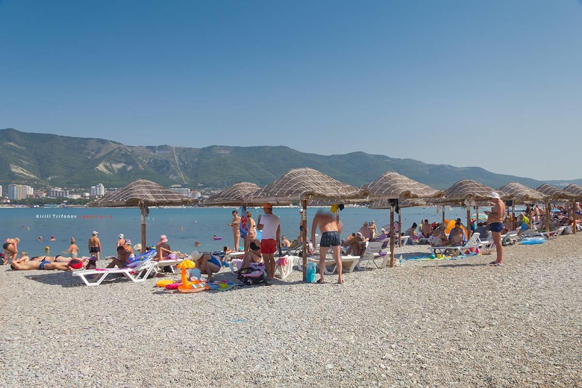 цокольным геленджик пляж сады морей фото целеустремлённой уверенной