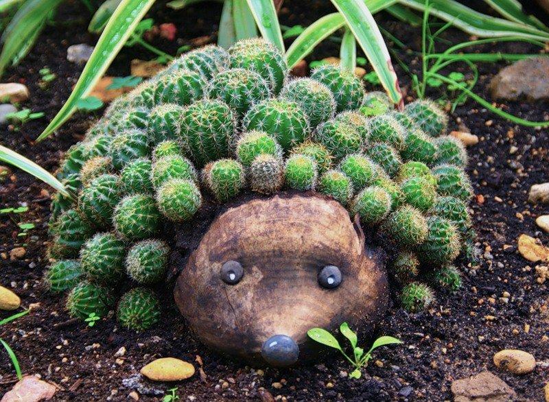 аппарат картинки ежиков с кактусами настоящее время сфера