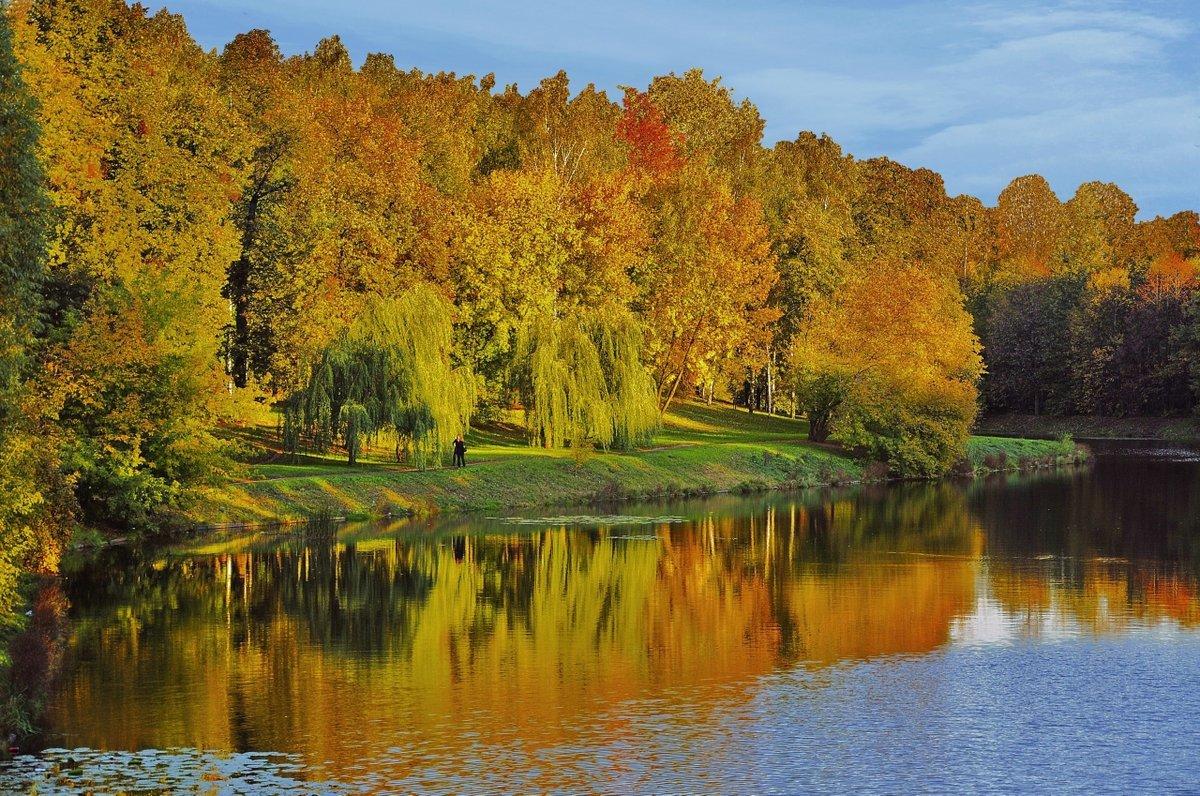 грубой очистки красивые фото пейзаж золотая осень мне жалко
