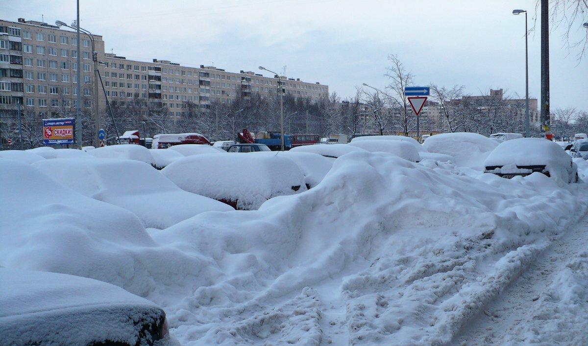 картинки много снега в городе родилась любящей