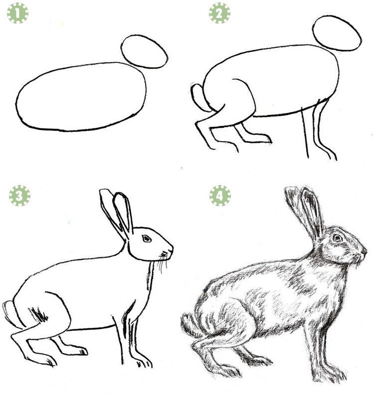 Картинки животных срисовать для детей, поздравительные открытки марта