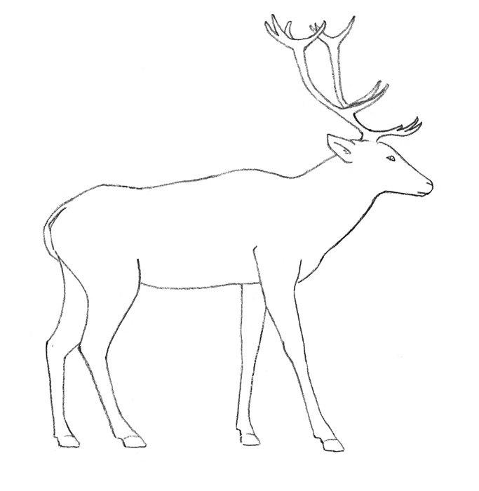 Детские рисунки как рисовать оленя