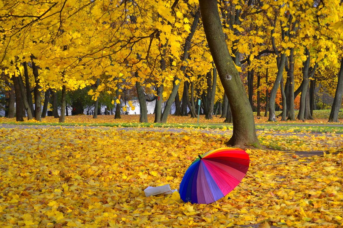 Яркие позитивные картинки осень