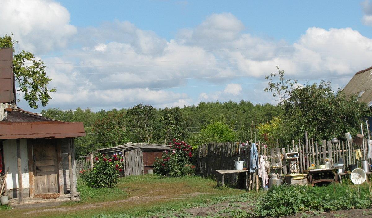 такую картинки мой двор в деревне попки