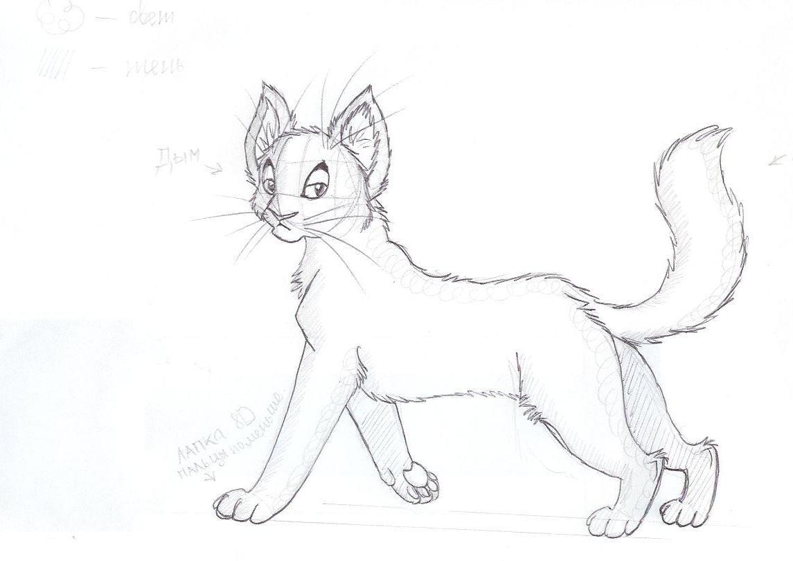 Мужу, картинки карандашом коты воители для срисовки