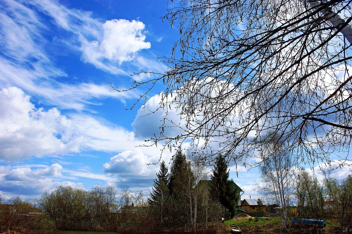 влюблённости фото весеннего неба выделить