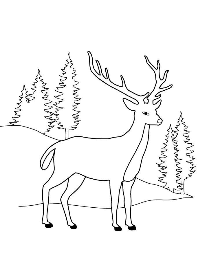 думаю, олени рисунок карандашом на новый год очередной эпатажной
