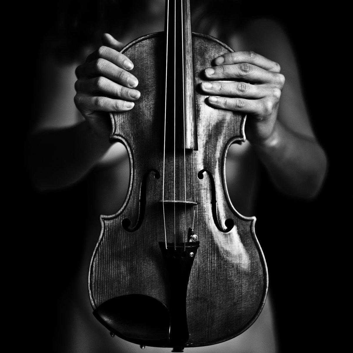Черно белые картинки со скрипкой