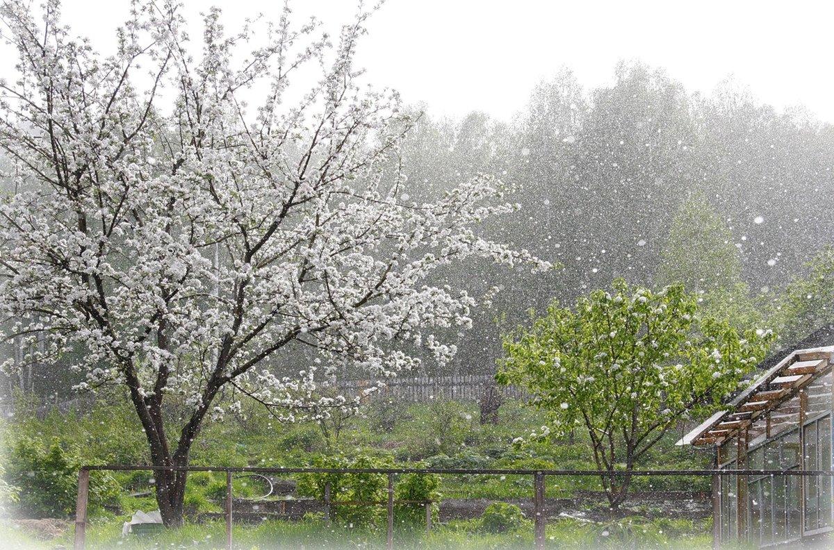 картинки дождь весной в городе снимок будет сохранён