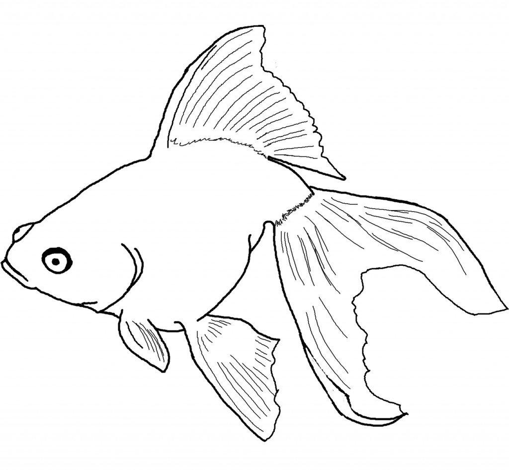 Рыба картинка для рисования