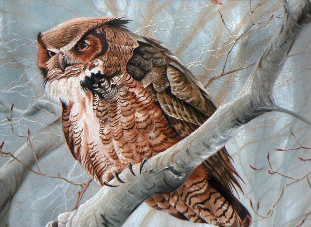 рисунок сова на ветке дерева знакомства