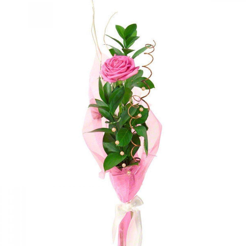 Портбукетнице, оформить красиво букет 3 5 розовых