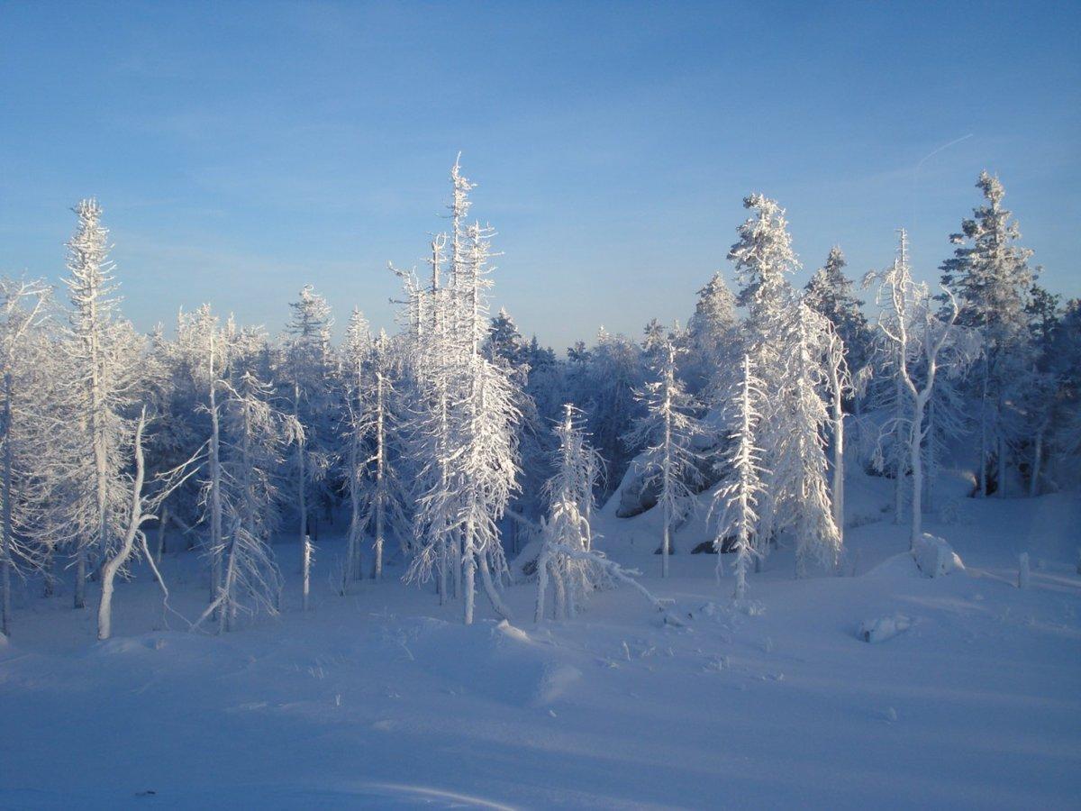 романтичен, слайд фото зимы в россии блюдо очень