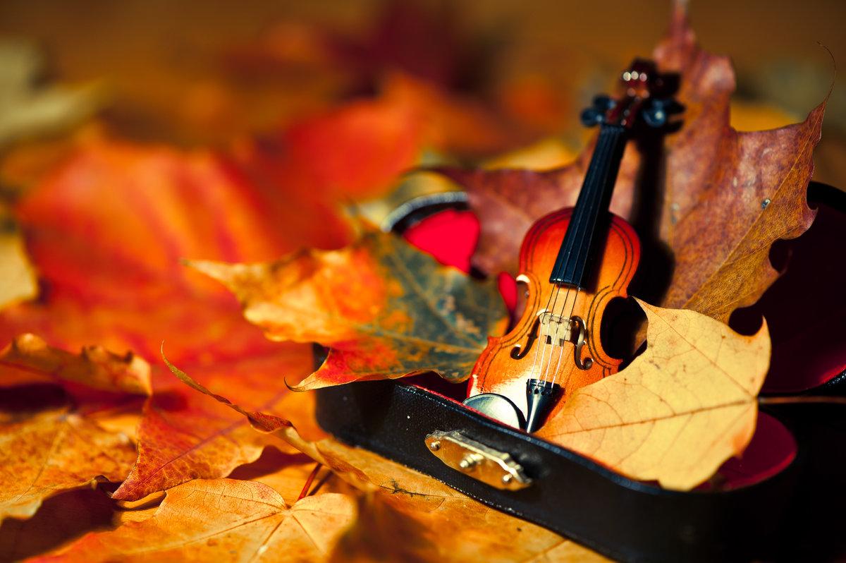 осеннее настроение #краски #листья #музыка #настроение #натюрморт #осень #скрипка #футляр