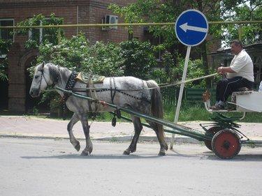 лошадь тележку прокатила