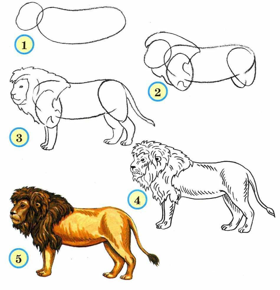 Картинки которые по которым можно учится рисовать