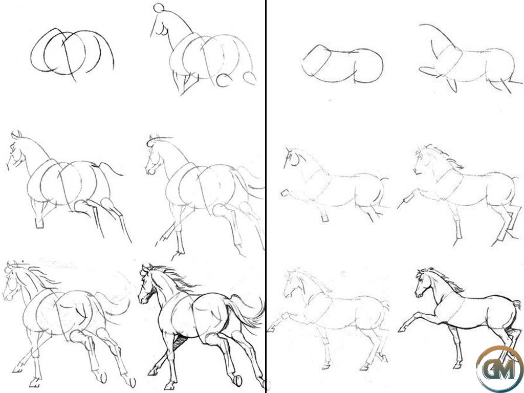 Рисунки карандашом поэтапно лошадь картинки