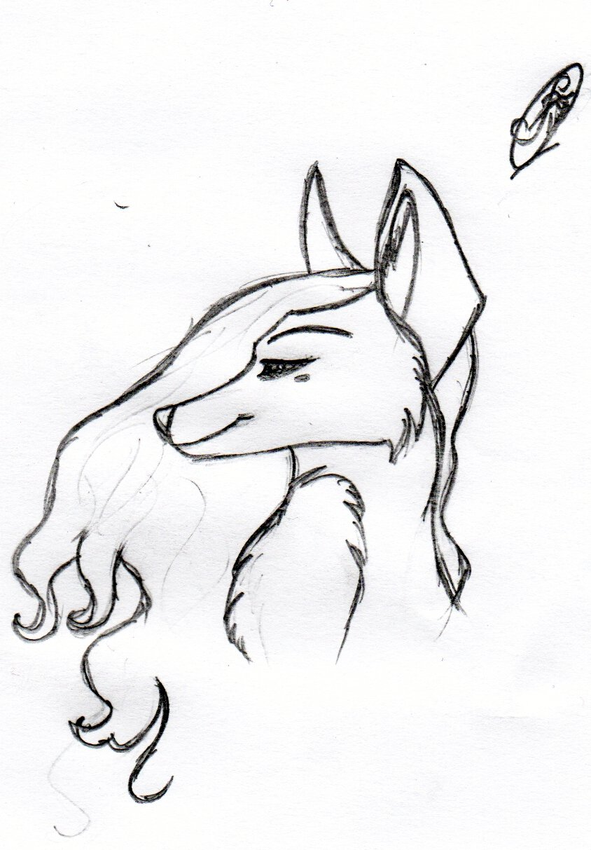 Картинки для срисовки животные карандашом легкие и красивые