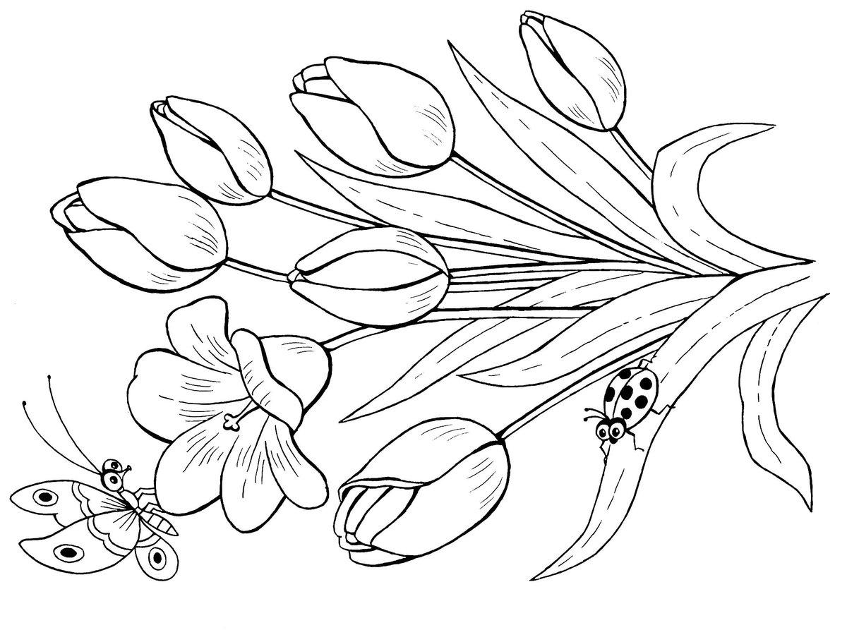 Картинки весенние цветы нарисованы карандашом