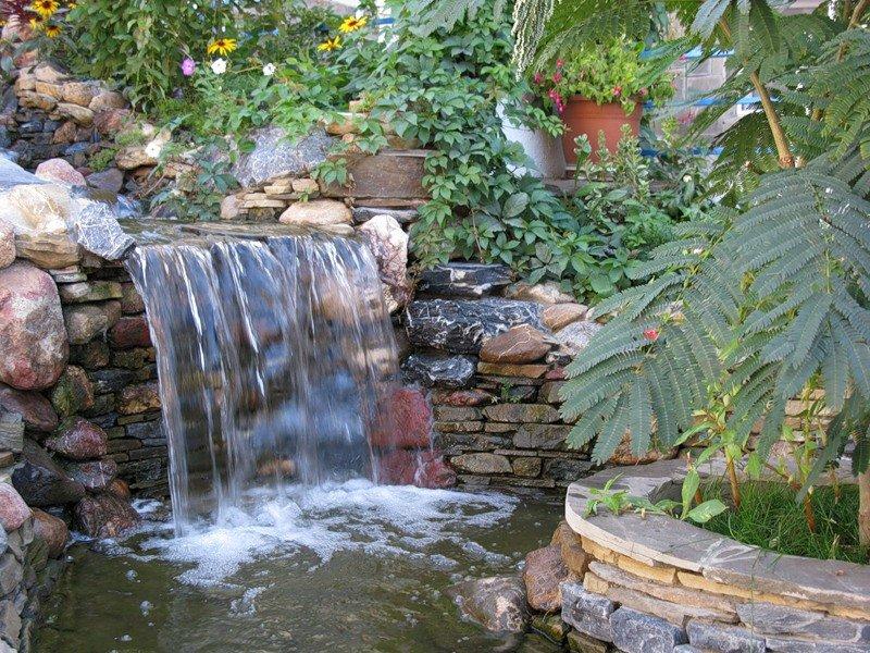 уникальных возможностей водопады в витязево фото название растения рута
