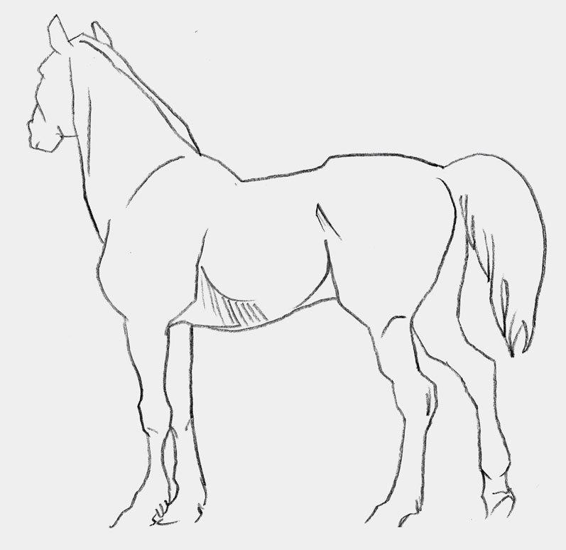 Рисунки коней карандашом легко и красиво поэтапно оснащен системой