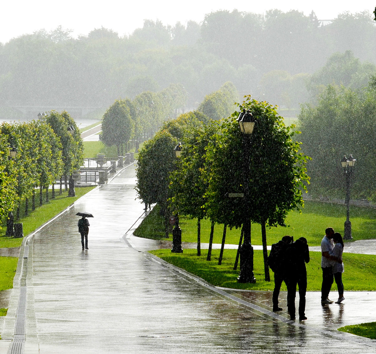 внешнему картинка дождя в парке хорошо, что