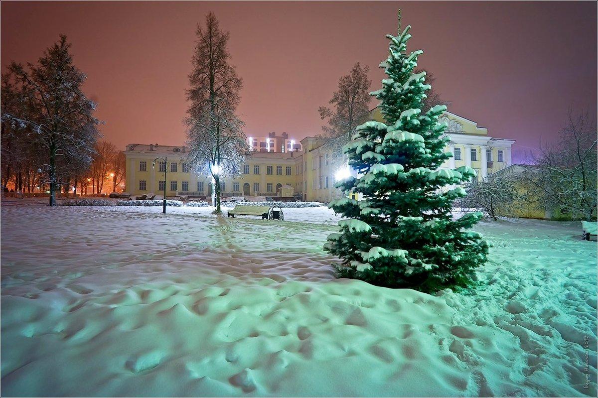 мирного севастополя зимний городской пейзаж тулы фото при