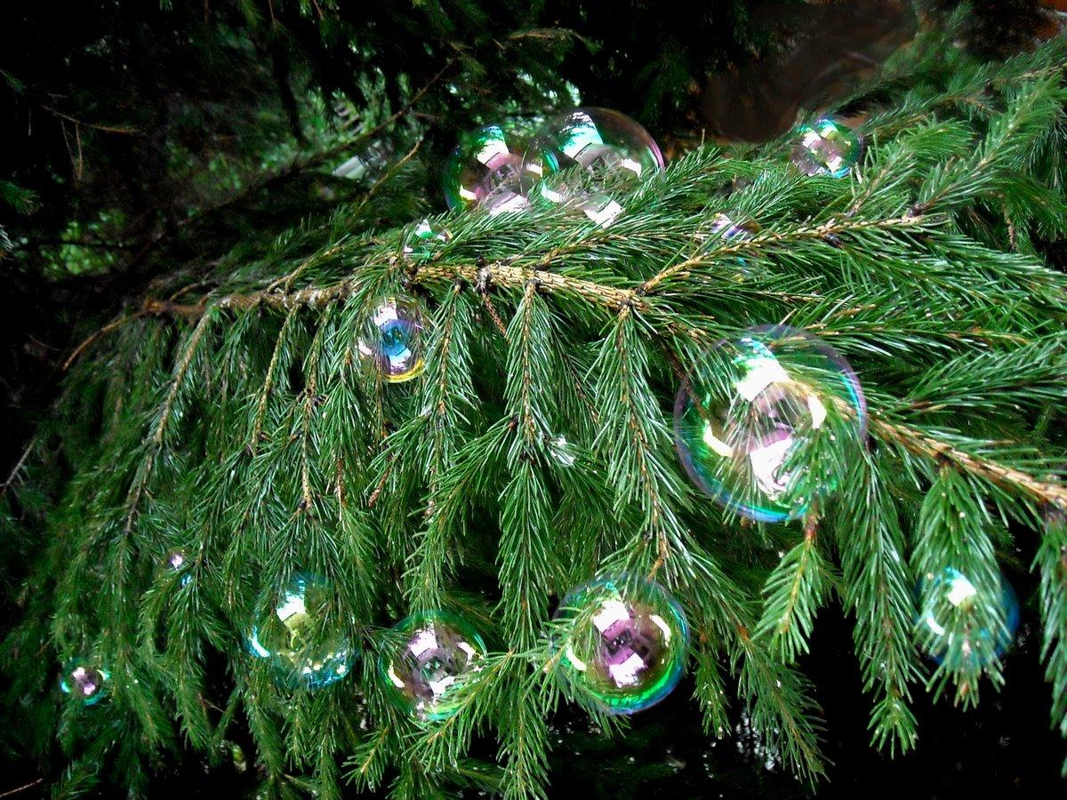 такие картинки при украшении елки давайте
