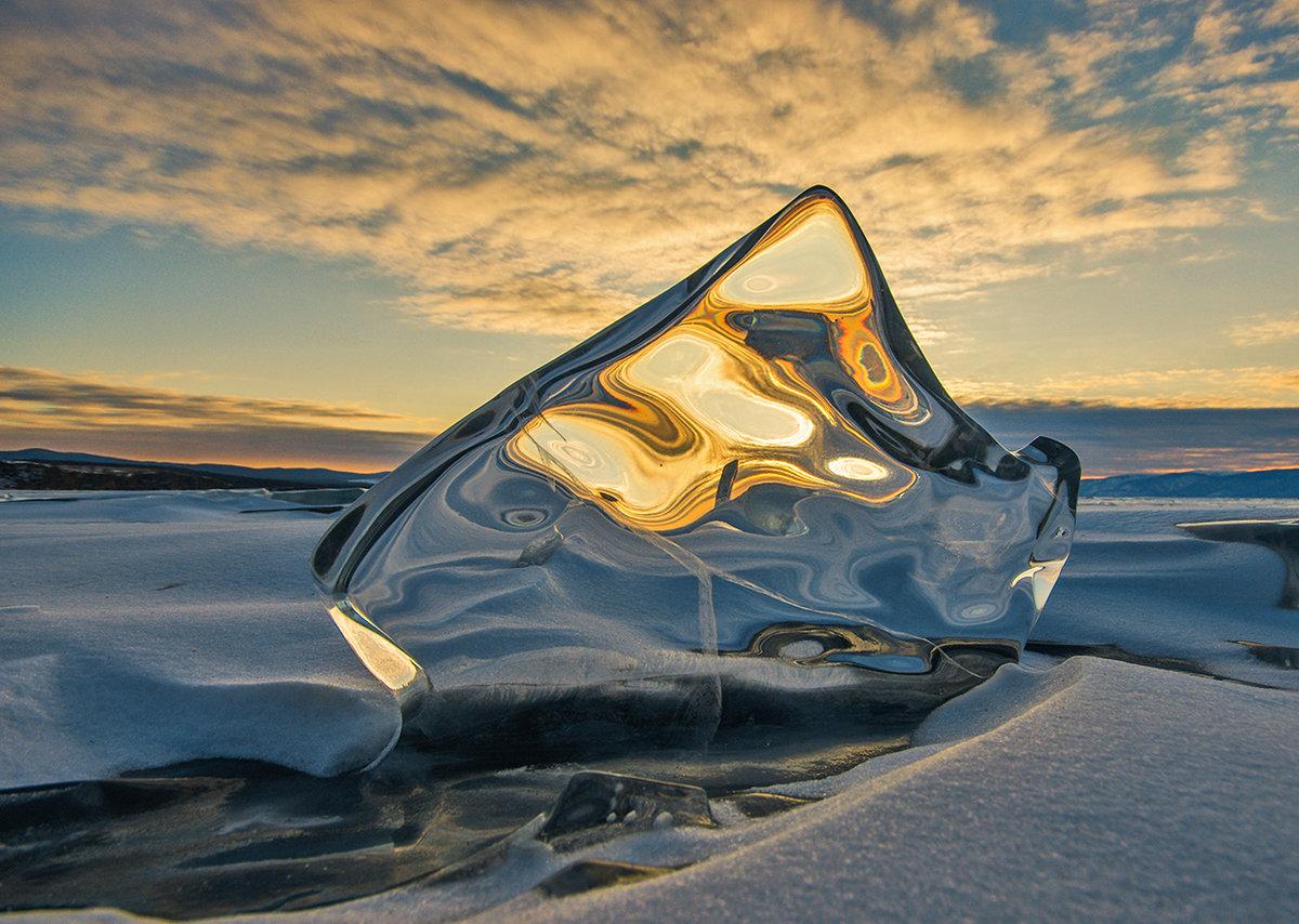 является млекопитающим лед льдинки картинки это, чуть единственный