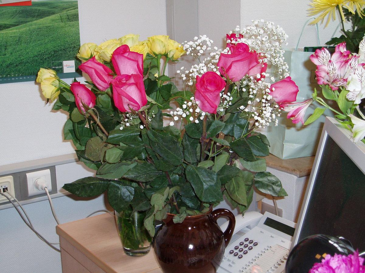 Фото цветы на столе в кабинете