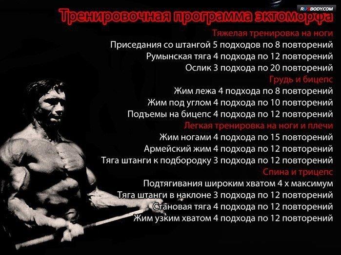 Программа тренировок для похудения эндоморфов
