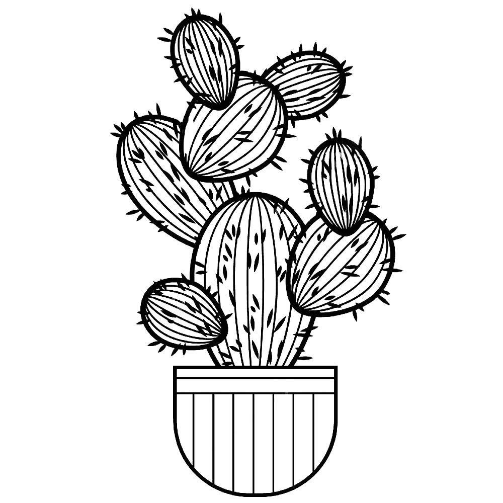 Растения в картинках черно белые