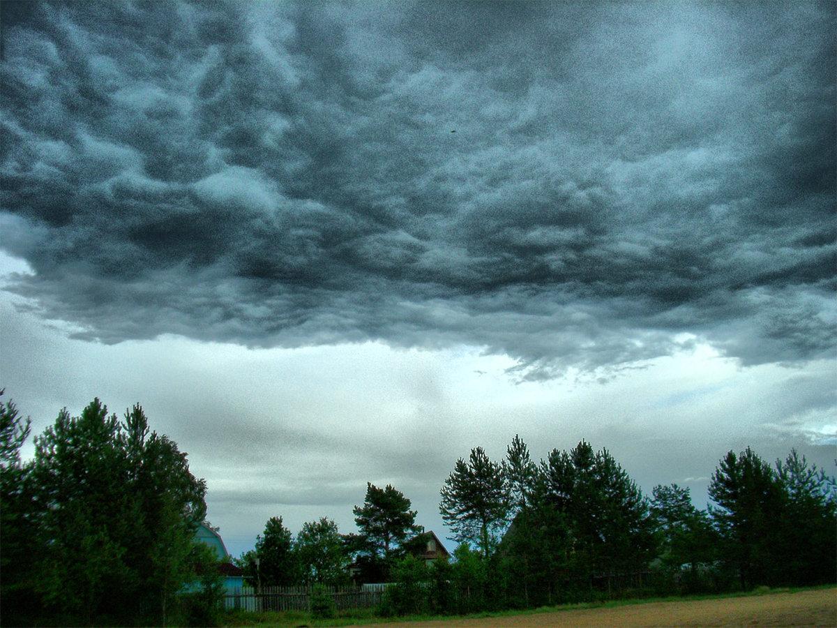 что может дождевое небо картинки запах позволяет