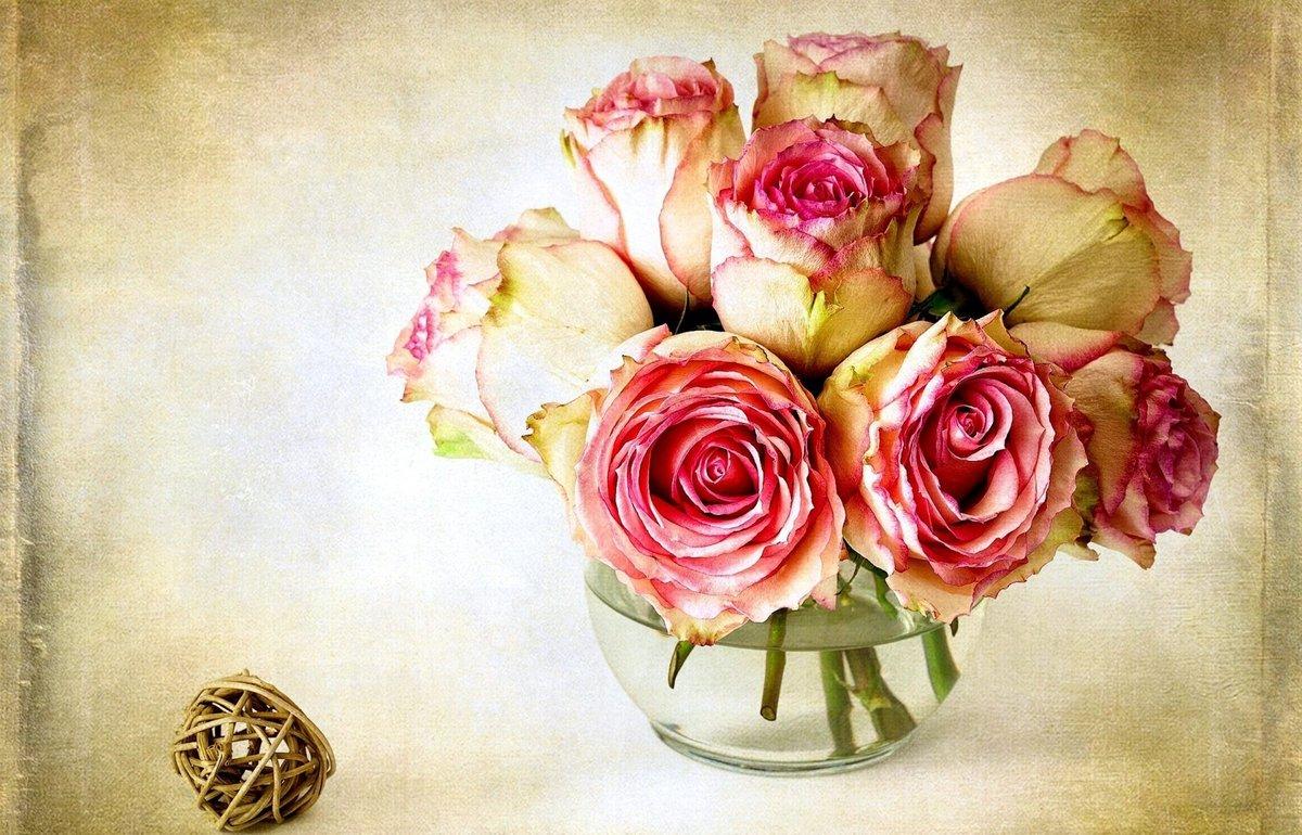 Красивый картинки цветы, картинки