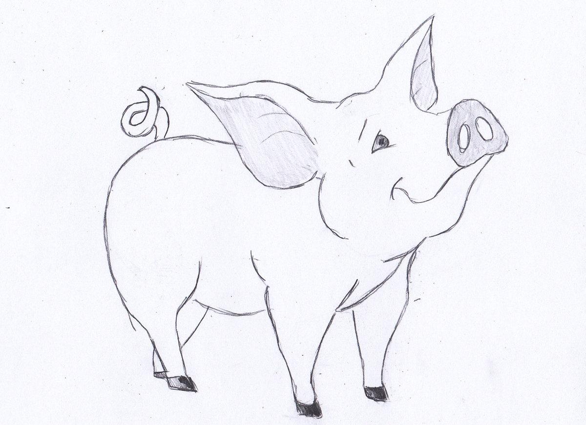 Смешные картинки, прикольные рисунки животных карандашом для детей