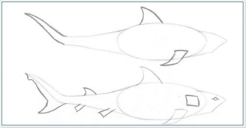 Картинки как нарисовать акулу карандашом поэтапно получить доступ