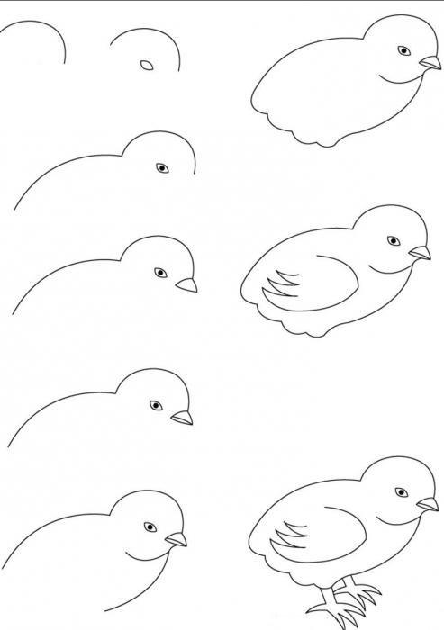 Рисунок цыпленок карандашом для детей