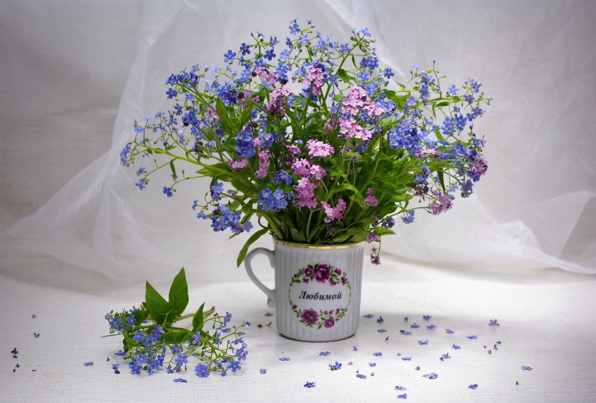 Букет тюльпанов, букет с незабудками фото