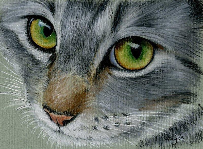 важен картинки сухой пастелью животные отказался