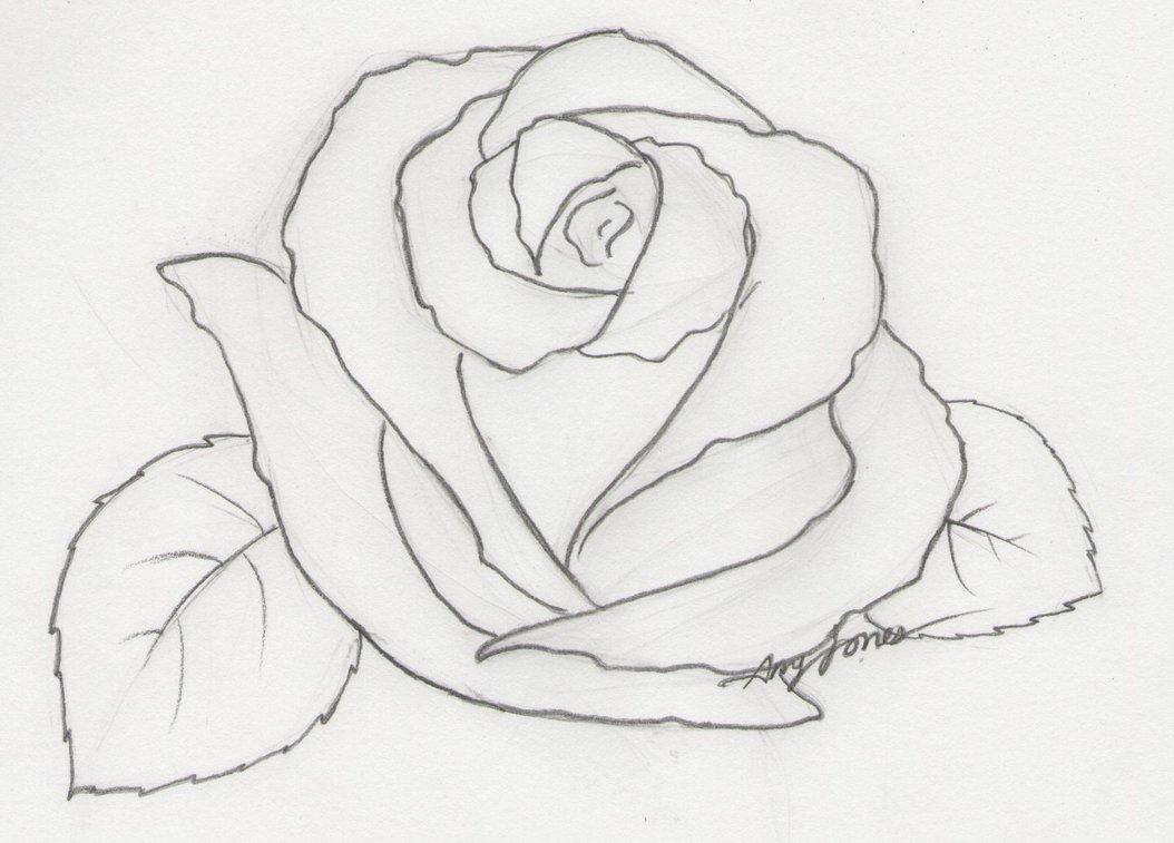Розы картинки нарисованные красивые, отправить гифы