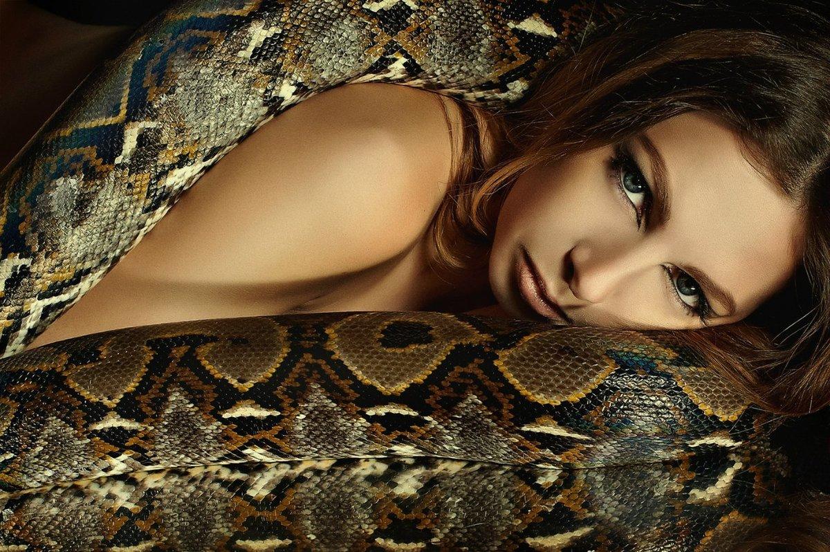 Поздравление, картинка со змеями
